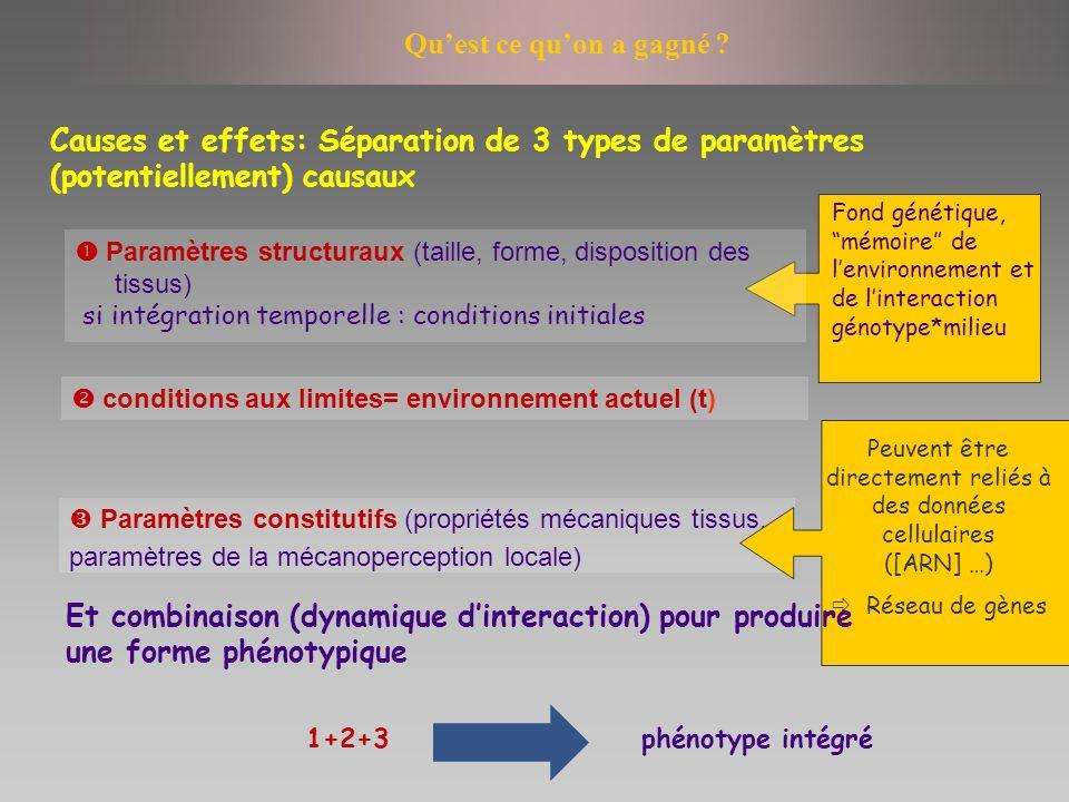 Causes et effets: Séparation de 3 types de paramètres (potentiellement) causaux Fond génétique, mémoire de lenvironnement et de linteraction génotype*