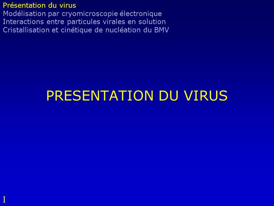 PRESENTATION DU VIRUS Présentation du virus Modélisation par cryomicroscopie électronique Interactions entre particules virales en solution Cristallisation et cinétique de nucléation du BMV I