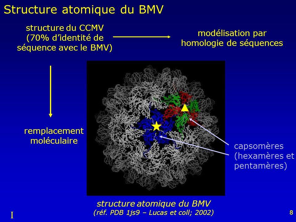 9 A C B A B C-ter Stabilisation de la capside interpénétration entre dimères fixation dions divalents à la surface I