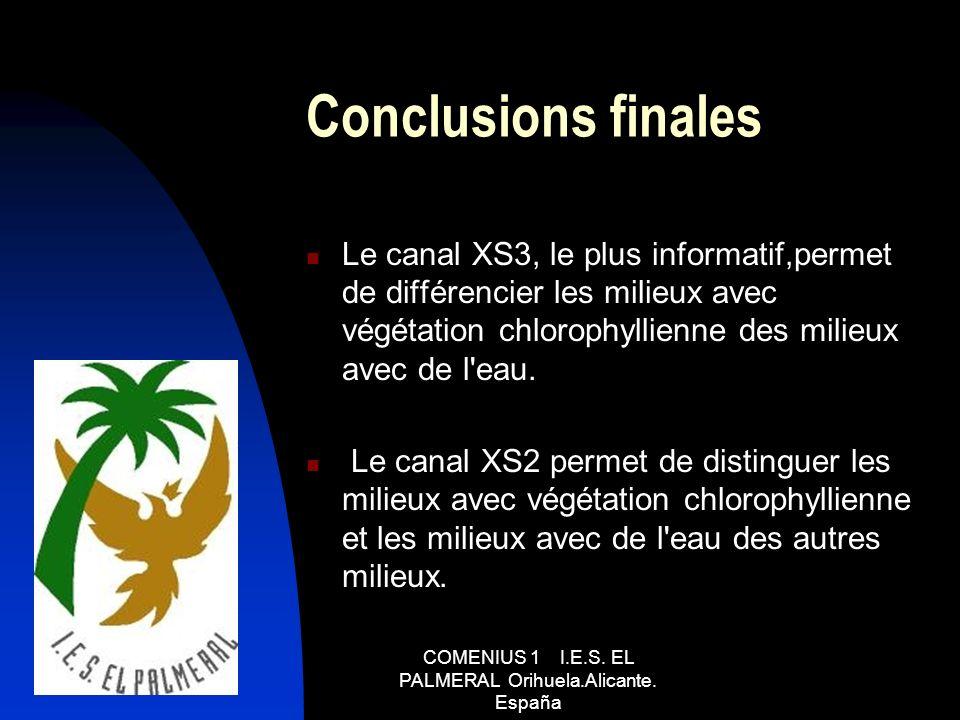 Conclusions finales Le canal XS3, le plus informatif,permet de différencier les milieux avec végétation chlorophyllienne des milieux avec de l'eau. Le