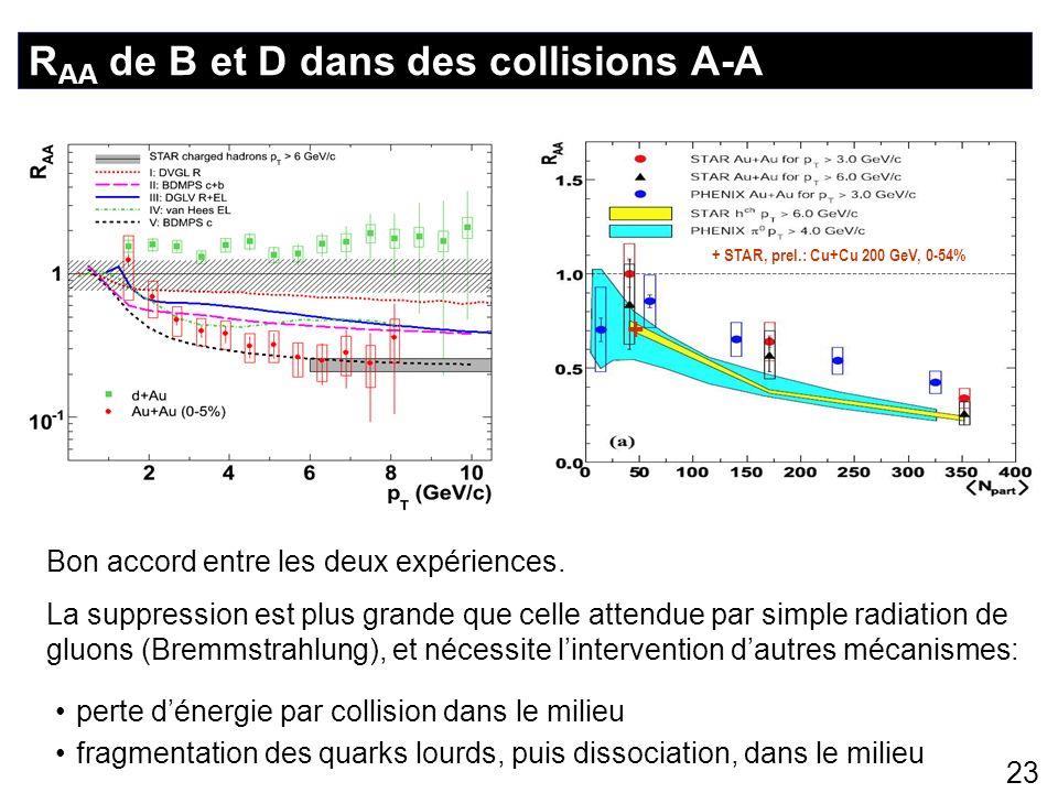 23 R AA de B et D dans des collisions A-A + + STAR, prel.: Cu+Cu 200 GeV, 0-54% Bon accord entre les deux expériences. La suppression est plus grande