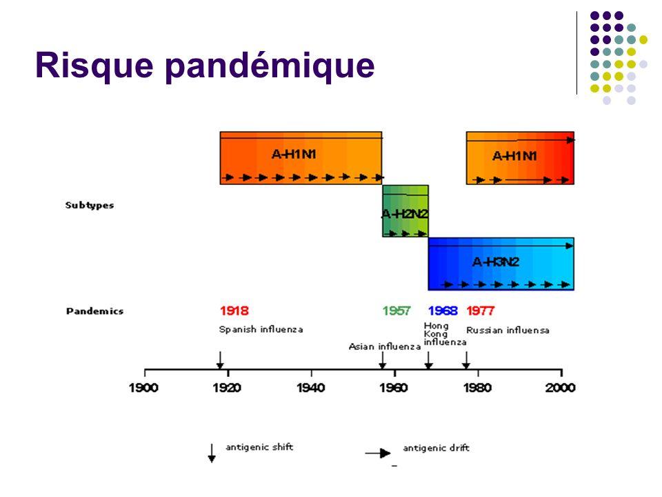 Risque pandémique