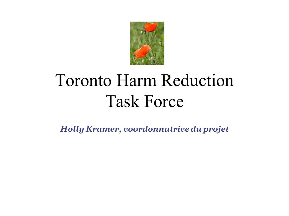 Toronto Harm Reduction Task Force Holly Kramer, coordonnatrice du projet