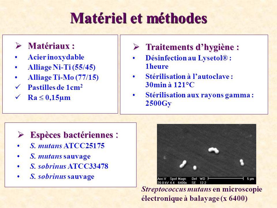 Méthode Adhérence bactérienne : Adhérence bactérienne : Echantillons recouverts de salive Durée de ladhérence bactérienne : 2 heures Coloration à lacridine orange > Fixation au glutaraldéhyde Dénombrement : analyse dimages et microscope à épifluorescence /quantimet 570 4 expérimentations par souche bactérienne Dispositif expérimental Streptococcus mutans en microscopie à fluorescence (x 100 à immersion) Grivet et coll., Automatic enumeration of adherent streptococci or actinomyces on dental alloy by fluorescence image analysis.