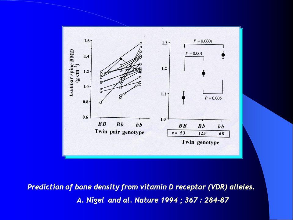 Prediction of bone density from vitamin D receptor (VDR) alleles.