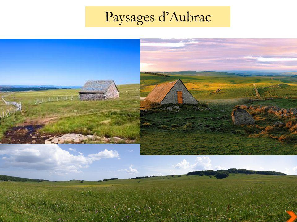 Paysages dAubrac