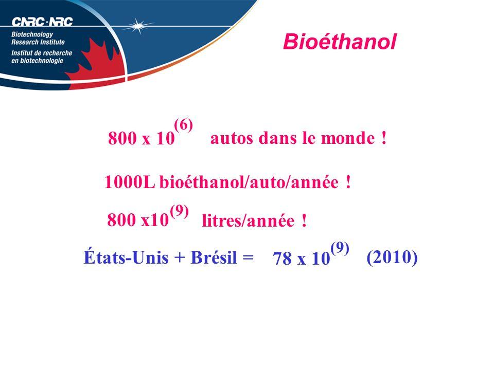 Bioéthanol 800 x 10 (6) autos dans le monde .1000L bioéthanol/auto/année .