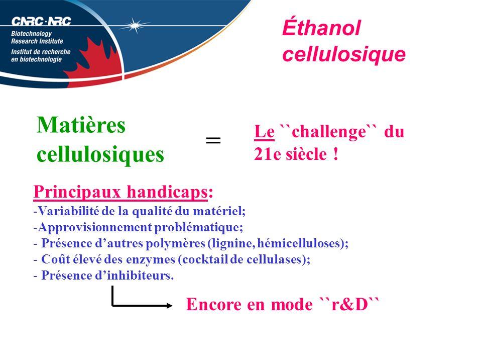 Éthanol cellulosique Matières cellulosiques = Le ``challenge`` du 21e siècle .