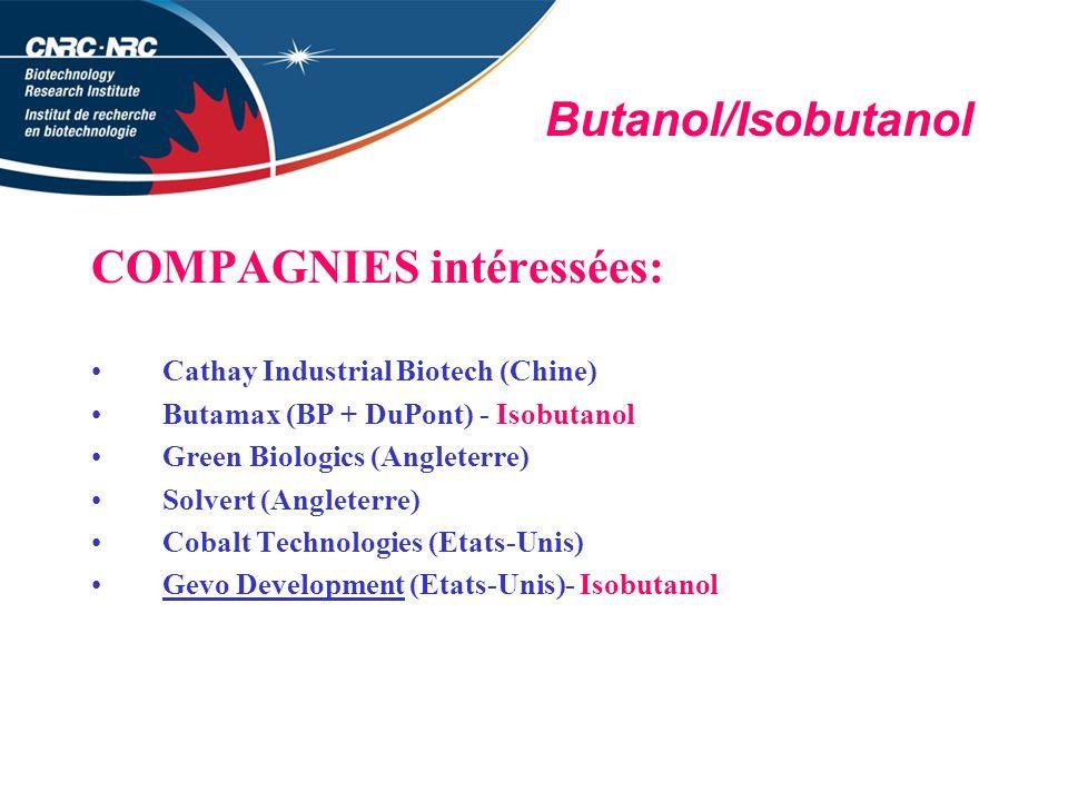 Butanol/Isobutanol COMPAGNIES intéressées: Cathay Industrial Biotech (Chine) Butamax (BP + DuPont) - Isobutanol Green Biologics (Angleterre) Solvert (Angleterre) Cobalt Technologies (Etats-Unis) Gevo Development (Etats-Unis)- Isobutanol