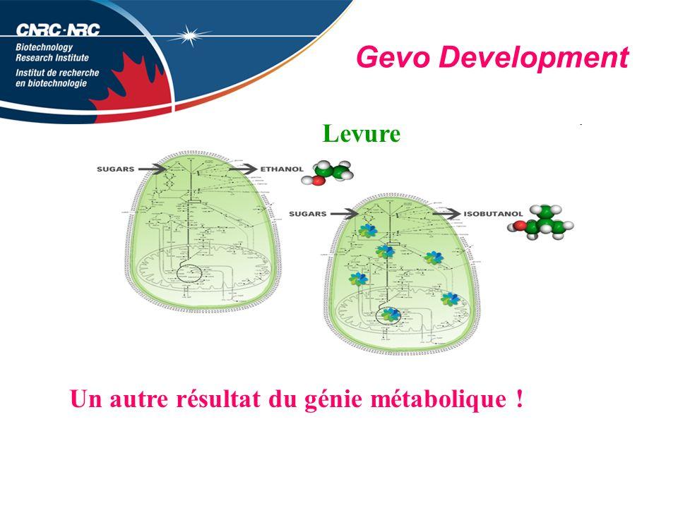 Gevo Development Un autre résultat du génie métabolique ! Levure