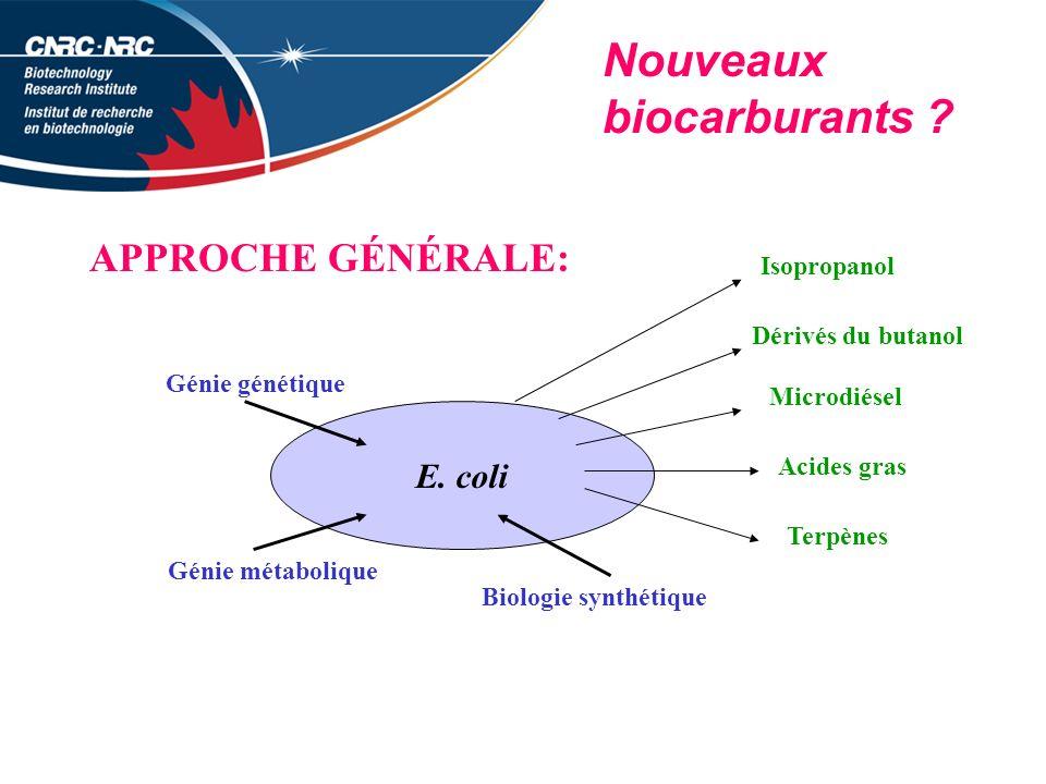 Nouveaux biocarburants .APPROCHE GÉNÉRALE: E.