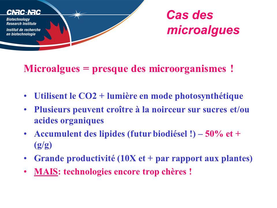 Cas des microalgues Microalgues = presque des microorganismes .