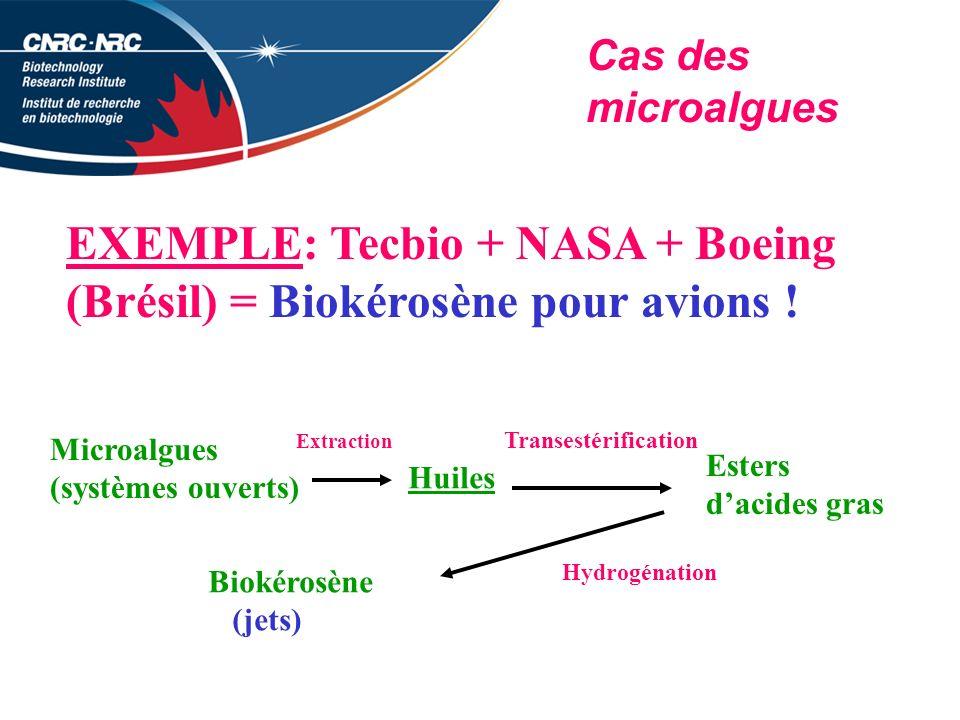 Cas des microalgues EXEMPLE: Tecbio + NASA + Boeing (Brésil) = Biokérosène pour avions .