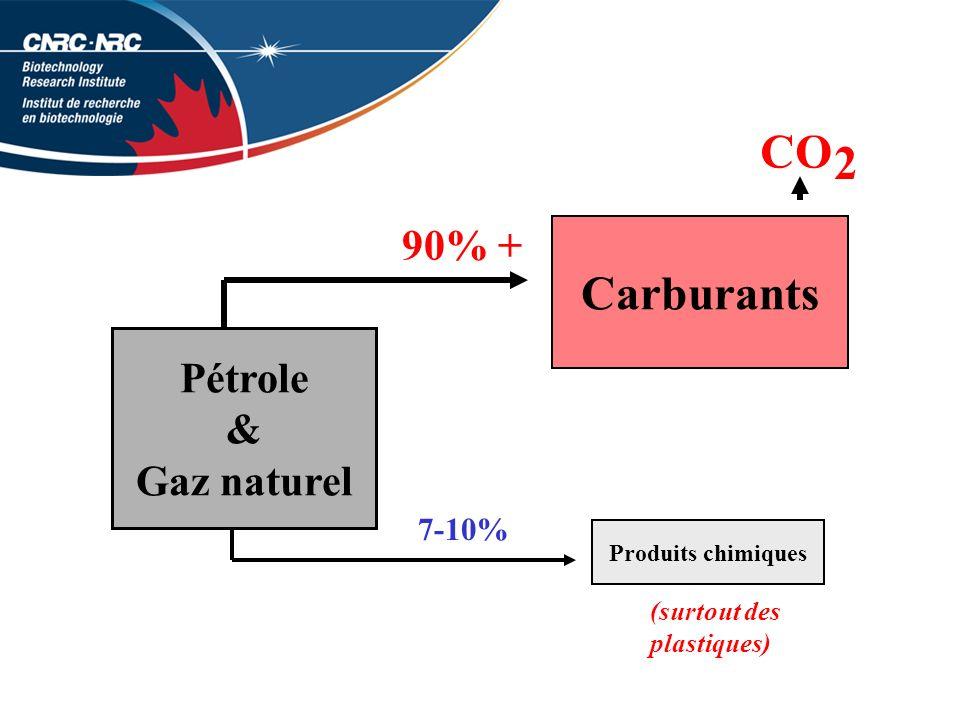 Pétrole & Gaz naturel Carburants Produits chimiques 7-10% 90% + CO 2 (surtout des plastiques)