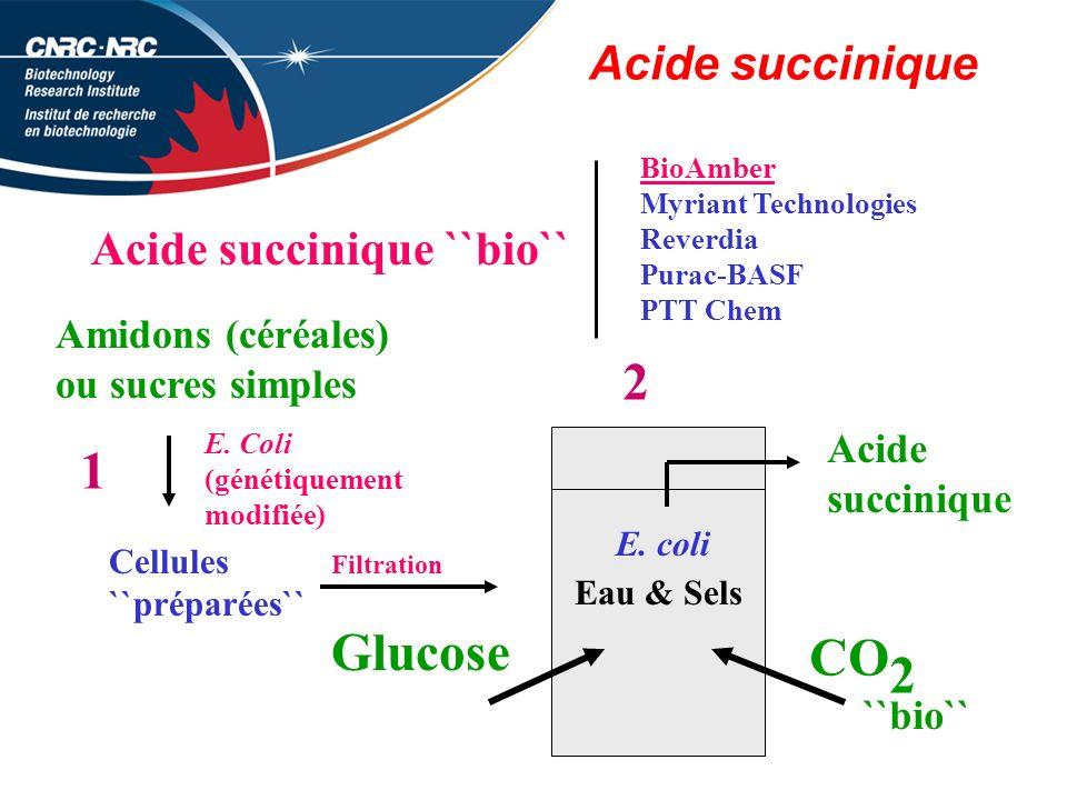 Acide succinique Acide succinique ``bio`` BioAmber Myriant Technologies Reverdia Purac-BASF PTT Chem Amidons (céréales) ou sucres simples Cellules ``préparées`` E.
