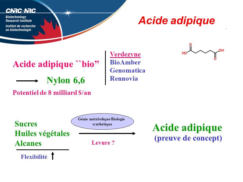 Acide adipique Acide adipique ``bio Verdezyne BioAmber Genomatica Rennovia Nylon 6,6 Potentiel de 8 milliard $/an Sucres Huiles végétales Alcanes Levure .