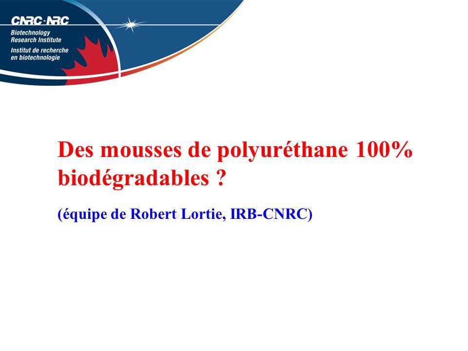 Des mousses de polyuréthane 100% biodégradables ? (équipe de Robert Lortie, IRB-CNRC)