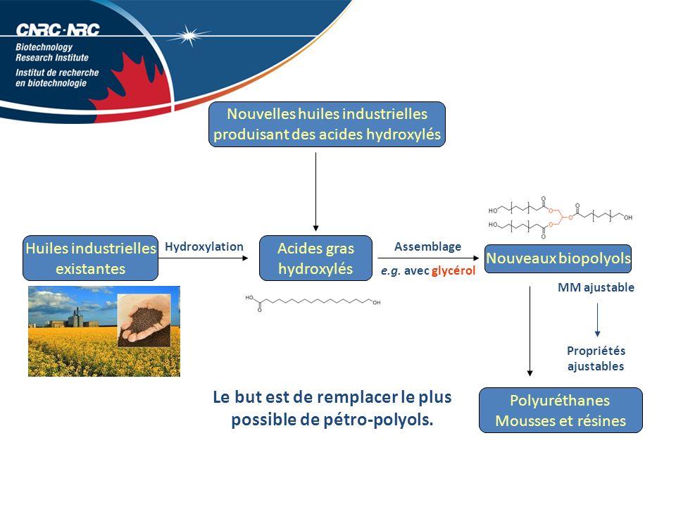 MM ajustable Propriétés ajustables Nouvelles huiles industrielles produisant des acides hydroxylés Acides gras hydroxylés Nouveaux biopolyols Huiles industrielles existantes Assemblage e.g.