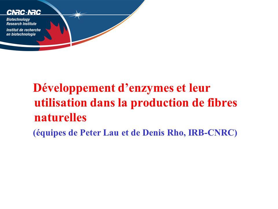Développement denzymes et leur utilisation dans la production de fibres naturelles (équipes de Peter Lau et de Denis Rho, IRB-CNRC)