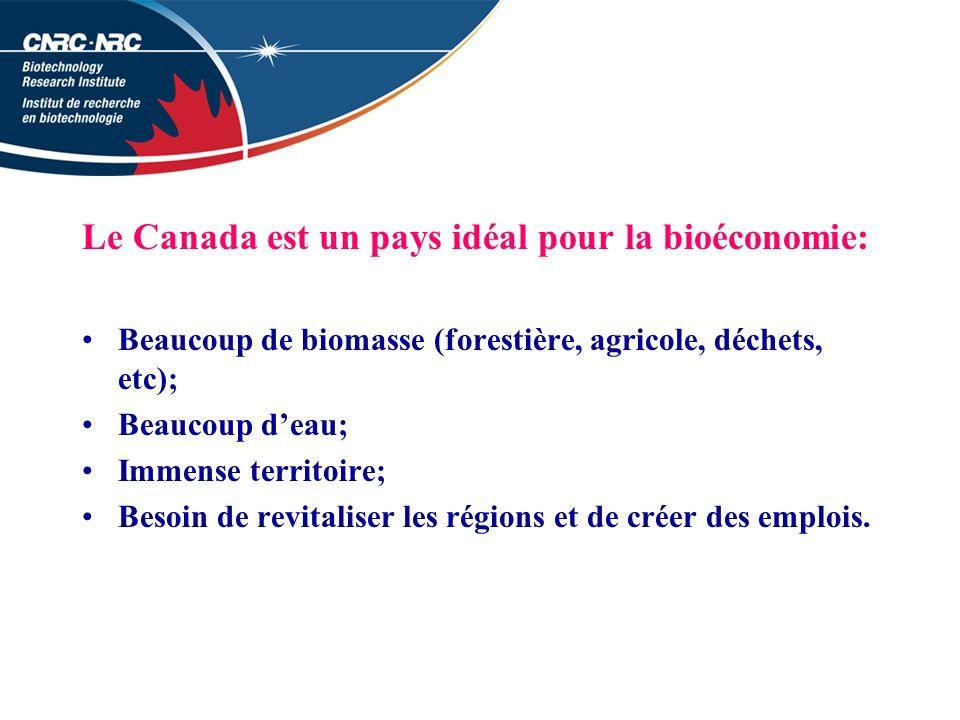Le Canada est un pays idéal pour la bioéconomie: Beaucoup de biomasse (forestière, agricole, déchets, etc); Beaucoup deau; Immense territoire; Besoin de revitaliser les régions et de créer des emplois.