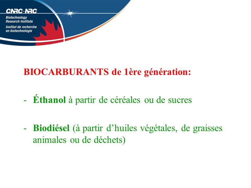 BIOCARBURANTS de 1ère génération: -Éthanol à partir de céréales ou de sucres -Biodiésel (à partir dhuiles végétales, de graisses animales ou de déchets)