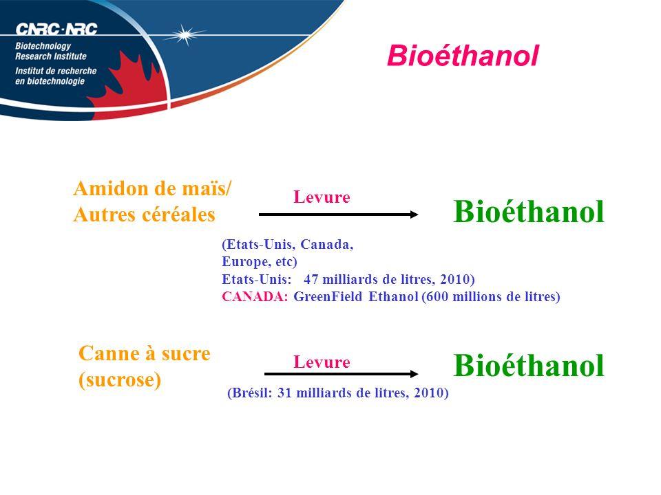 Bioéthanol Amidon de maïs/ Autres céréales Levure Bioéthanol (Etats-Unis, Canada, Europe, etc) Etats-Unis: 47 milliards de litres, 2010) CANADA: GreenField Ethanol (600 millions de litres) Canne à sucre (sucrose) Levure Bioéthanol (Brésil: 31 milliards de litres, 2010)