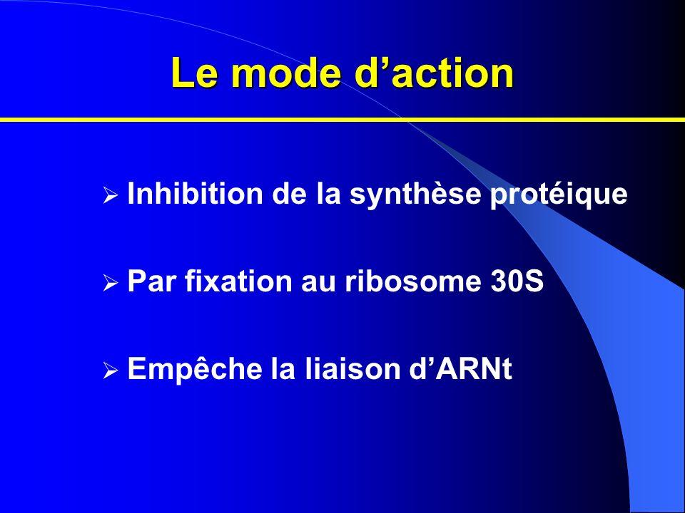 Le mode daction Inhibition de la synthèse protéique Par fixation au ribosome 30S Empêche la liaison dARNt