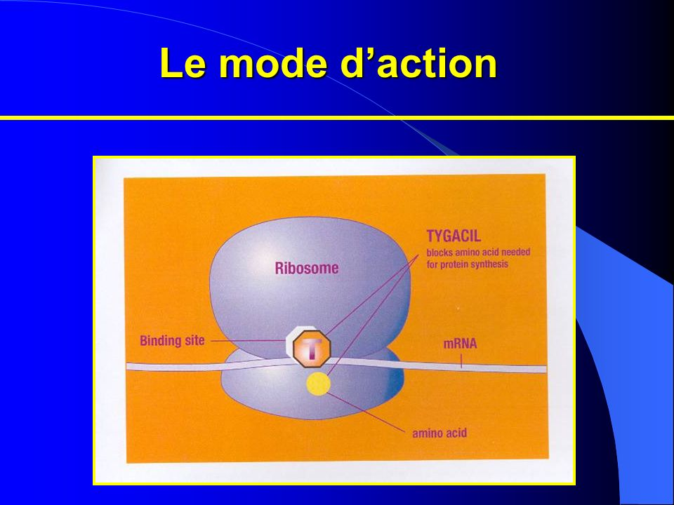 Le mode daction