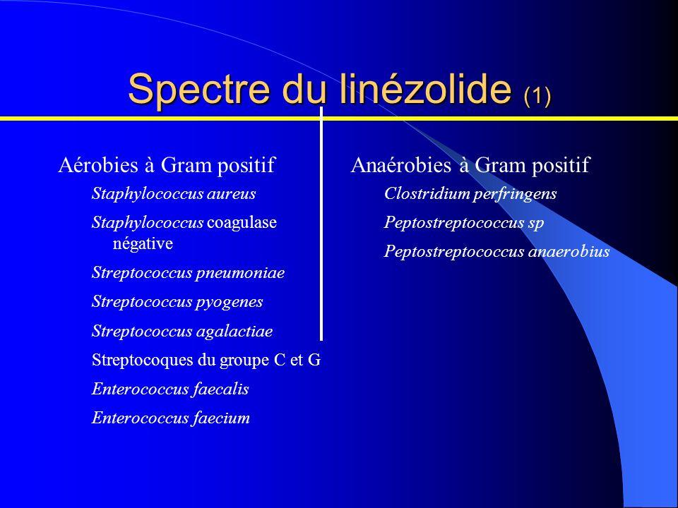 Aérobies à Gram positif Staphylococcus aureus Staphylococcus coagulase négative Streptococcus pneumoniae Streptococcus pyogenes Streptococcus agalacti
