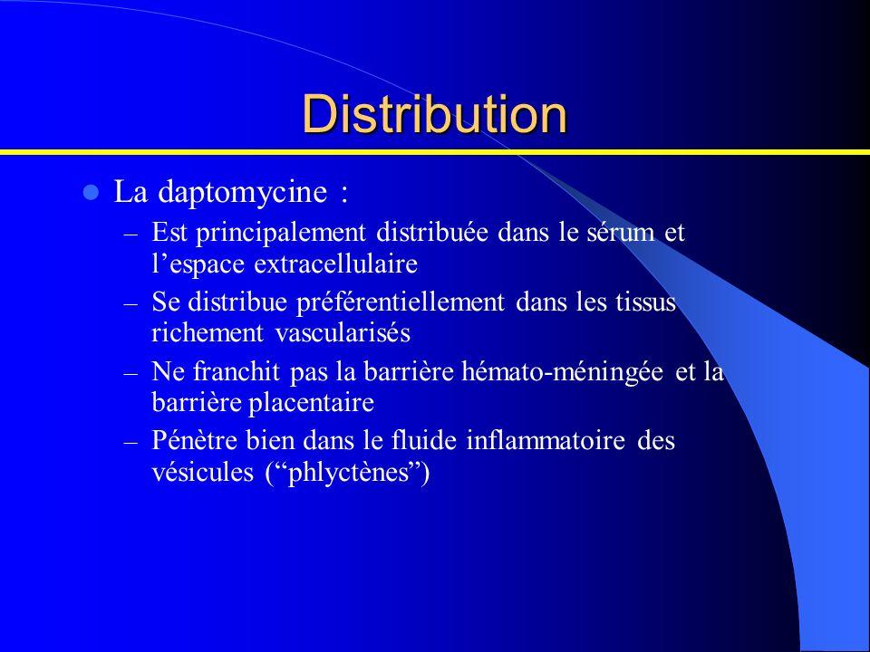 Distribution La daptomycine : – Est principalement distribuée dans le sérum et lespace extracellulaire – Se distribue préférentiellement dans les tiss
