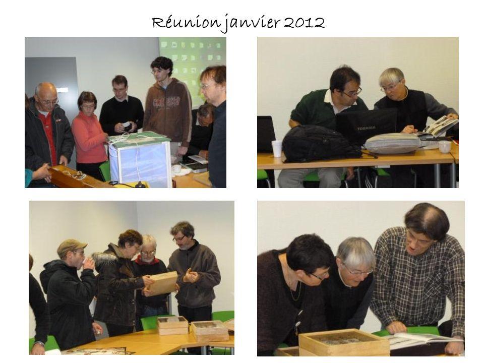 Réunion janvier 2012