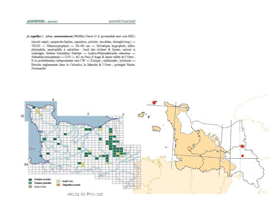 Atlas de Provost