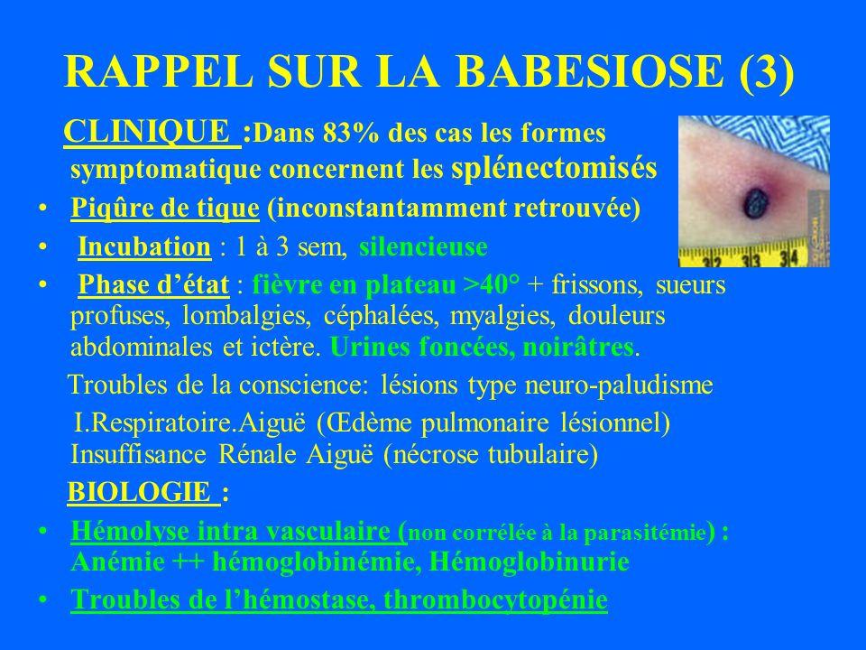 RAPPEL SUR LA BABESIOSE (2) Babésiose = Piroplasmose: infection par des protozoaires voisins des Plasmodium : les Babesia Transmission par piqûre de tiques ( canidés, équidés, bovidés [80% bovins parasités dans louest de la France], rongeurs) de Mars à Octobre (Période dactivité de la tique) comme la maladie de Lyme.