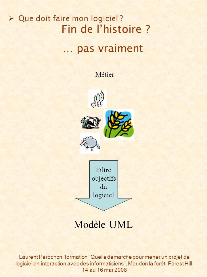 Laurent Pérochon, formation Quelle démarche pour mener un projet de logiciel en interaction avec des informaticiens , Meudon la forêt, Forest Hill, 14 au 16 mai 2008 … pas vraiment Métier Que doit faire mon logiciel .