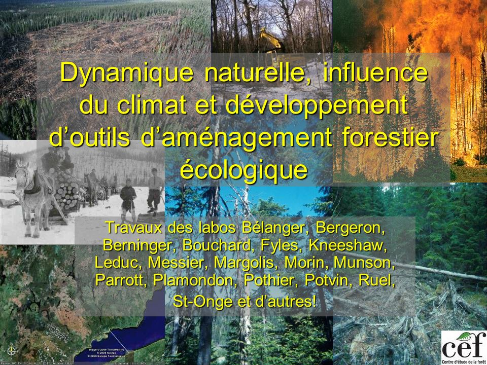 Dynamique naturelle, influence du climat et développement doutils daménagement forestier écologique Travaux des labos Bélanger, Bergeron, Berninger, B