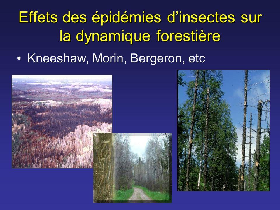 Effets des épidémies dinsectes sur la dynamique forestière Kneeshaw, Morin, Bergeron, etc