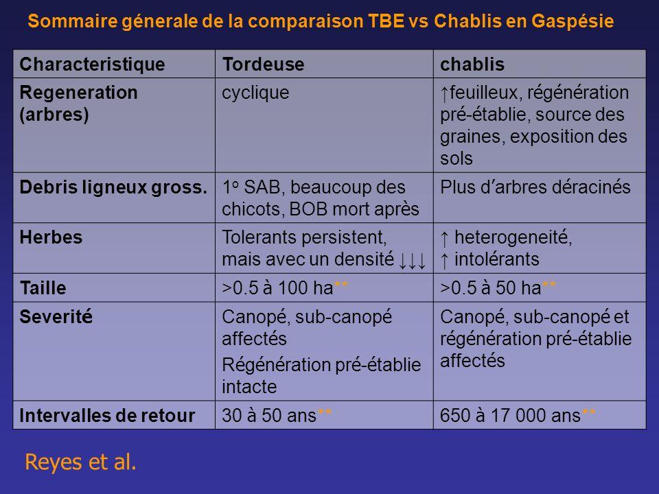 Sommaire génerale de la comparaison TBE vs Chablis en Gaspésie CharacteristiqueTordeusechablis Regeneration (arbres) cyclique feuilleux, r é g é n é r