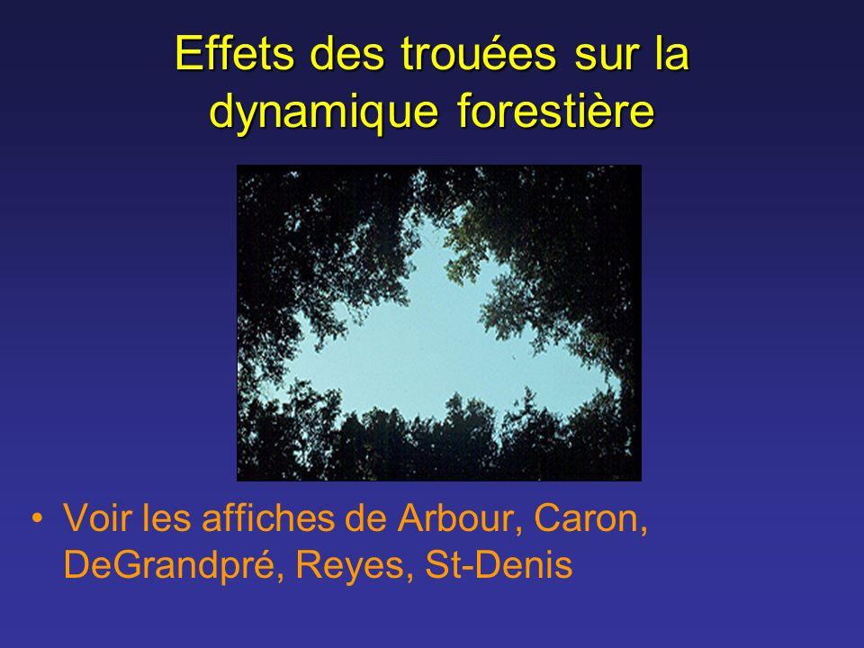 Effets des trouées sur la dynamique forestière Voir les affiches de Arbour, Caron, DeGrandpré, Reyes, St-Denis