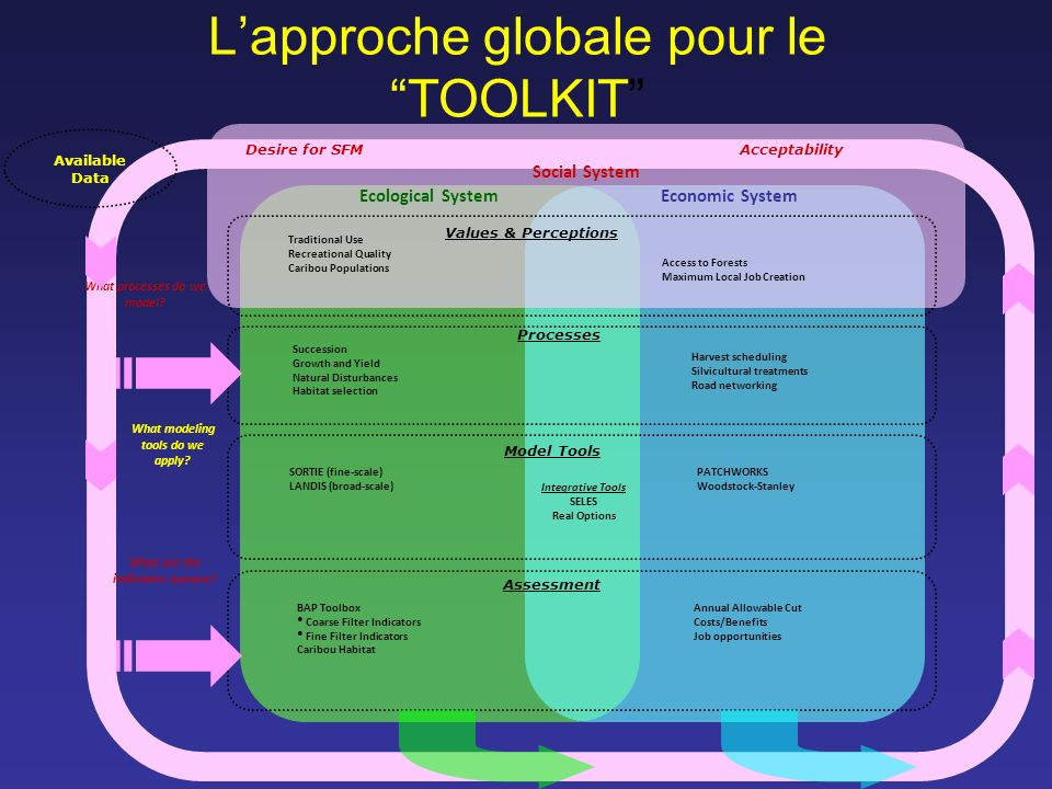 Lapproche globale pour le TOOLKIT Social System Processes Model Tools Assessment Succession Growth and Yield Natural Disturbances Habitat selection SO