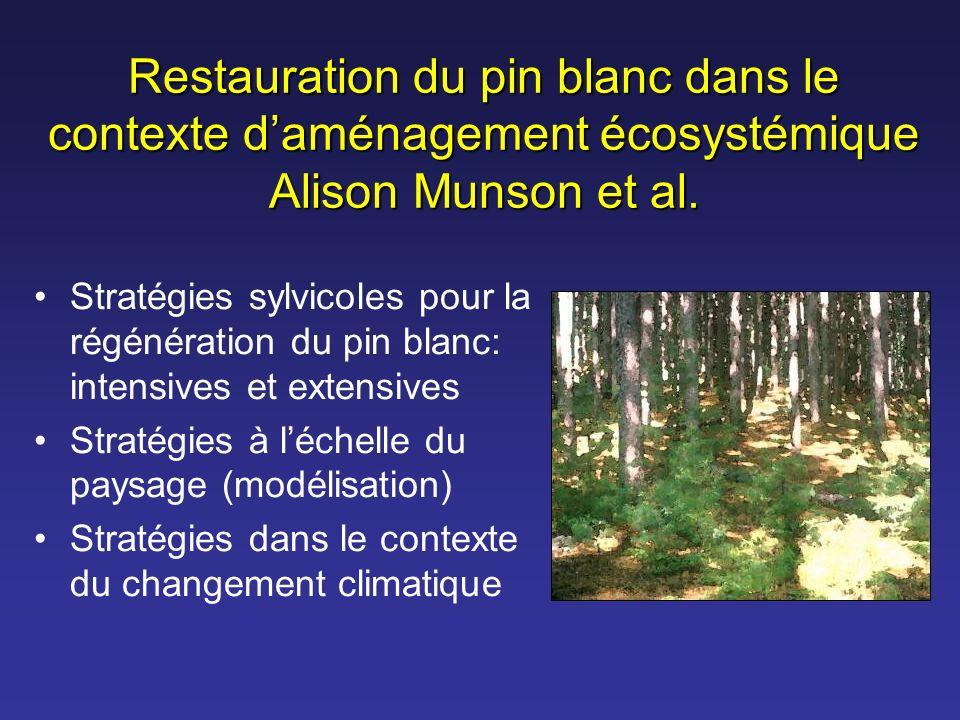 Restauration du pin blanc dans le contexte daménagement écosystémique Alison Munson et al. Stratégies sylvicoles pour la régénération du pin blanc: in
