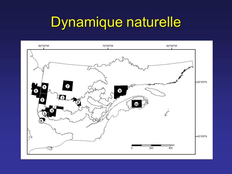 Dynamique naturelle