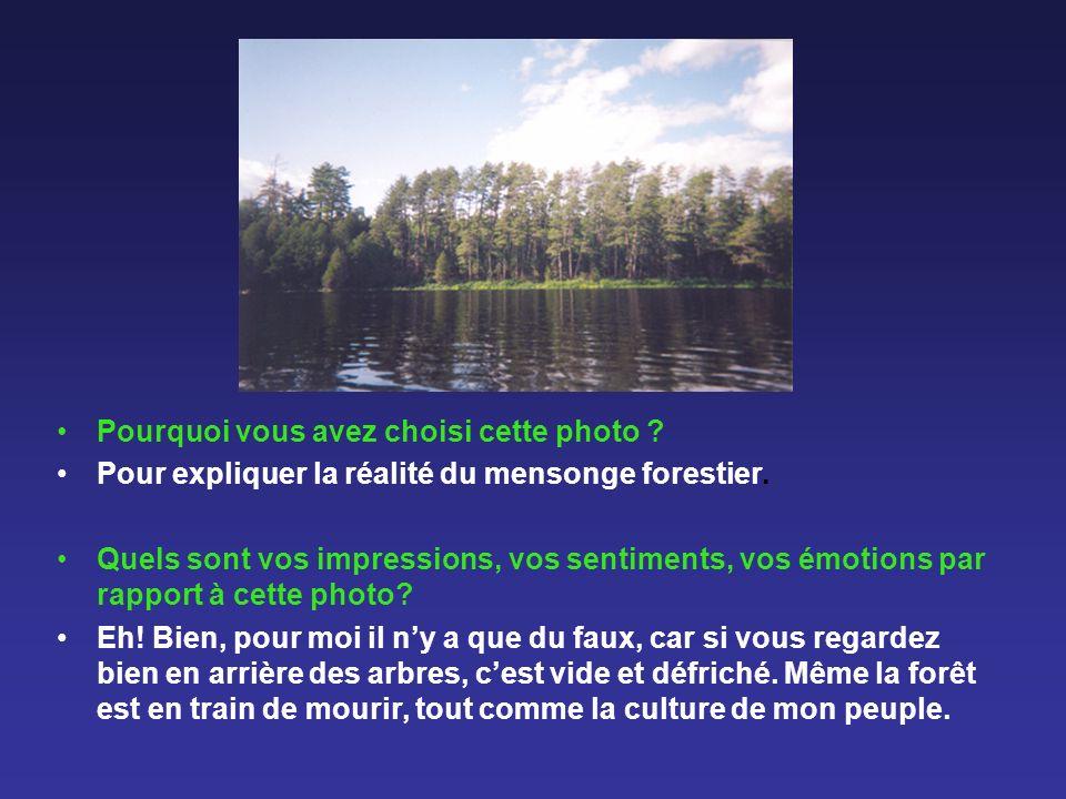 Pourquoi vous avez choisi cette photo ? Pour expliquer la réalité du mensonge forestier. Quels sont vos impressions, vos sentiments, vos émotions par
