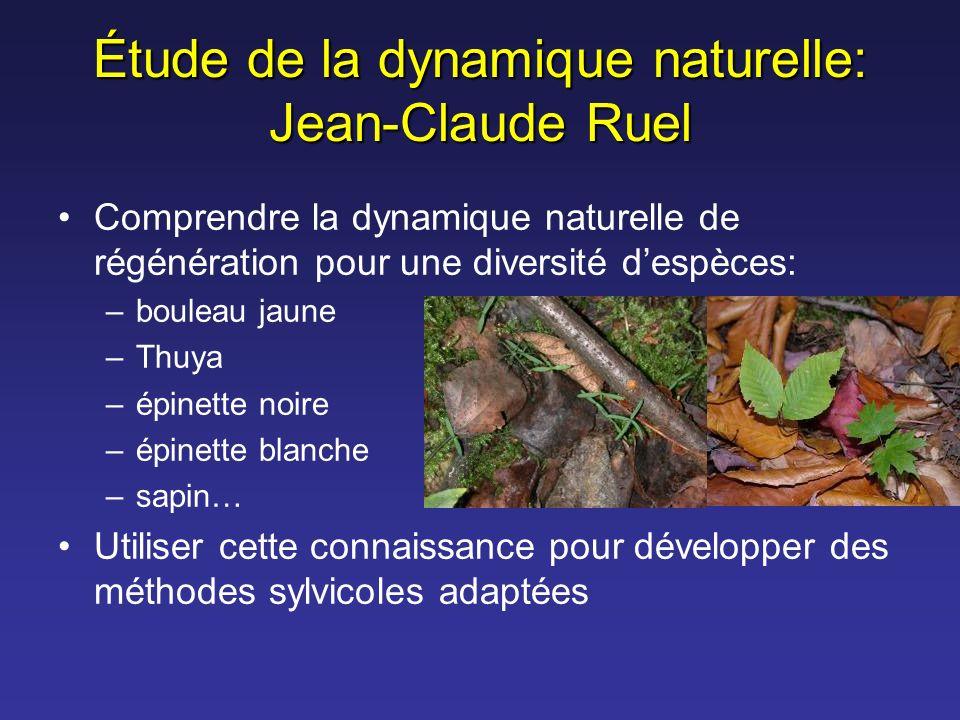 Étude de la dynamique naturelle: Jean-Claude Ruel Comprendre la dynamique naturelle de régénération pour une diversité despèces: –bouleau jaune –Thuya