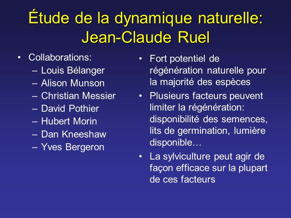 Collaborations: –Louis Bélanger –Alison Munson –Christian Messier –David Pothier –Hubert Morin –Dan Kneeshaw –Yves Bergeron Fort potentiel de régénéra