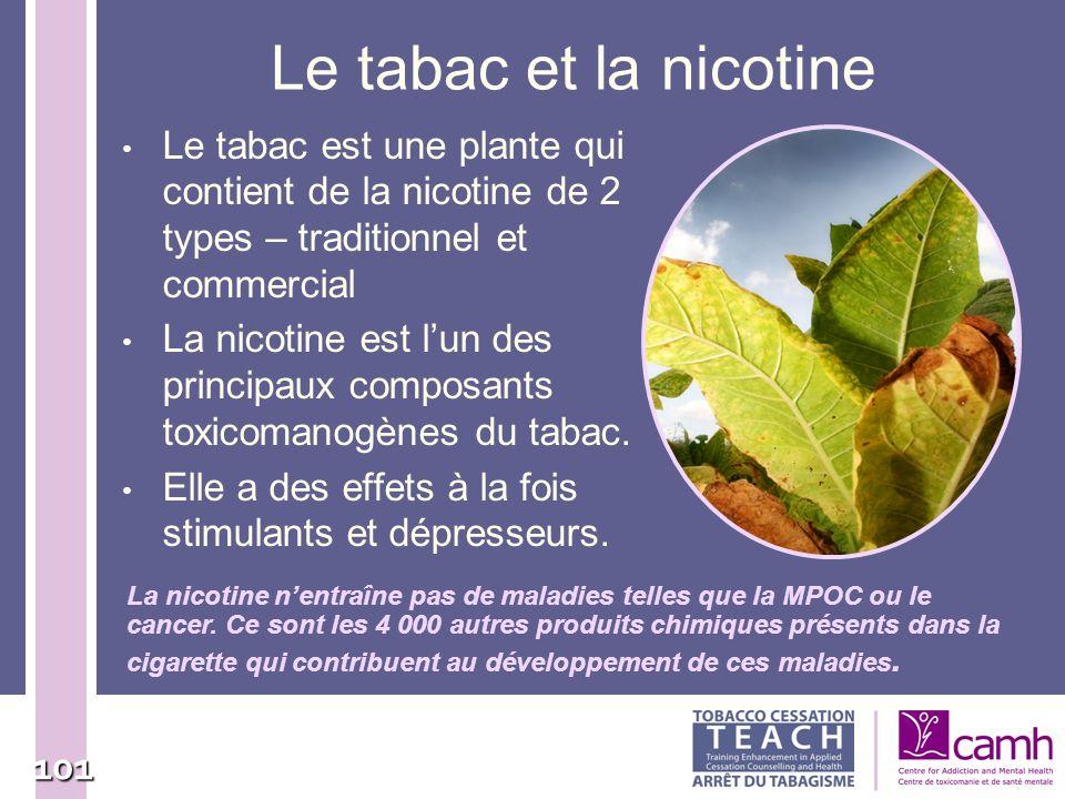 101 Le tabac et la nicotine Le tabac est une plante qui contient de la nicotine de 2 types – traditionnel et commercial La nicotine est lun des princi