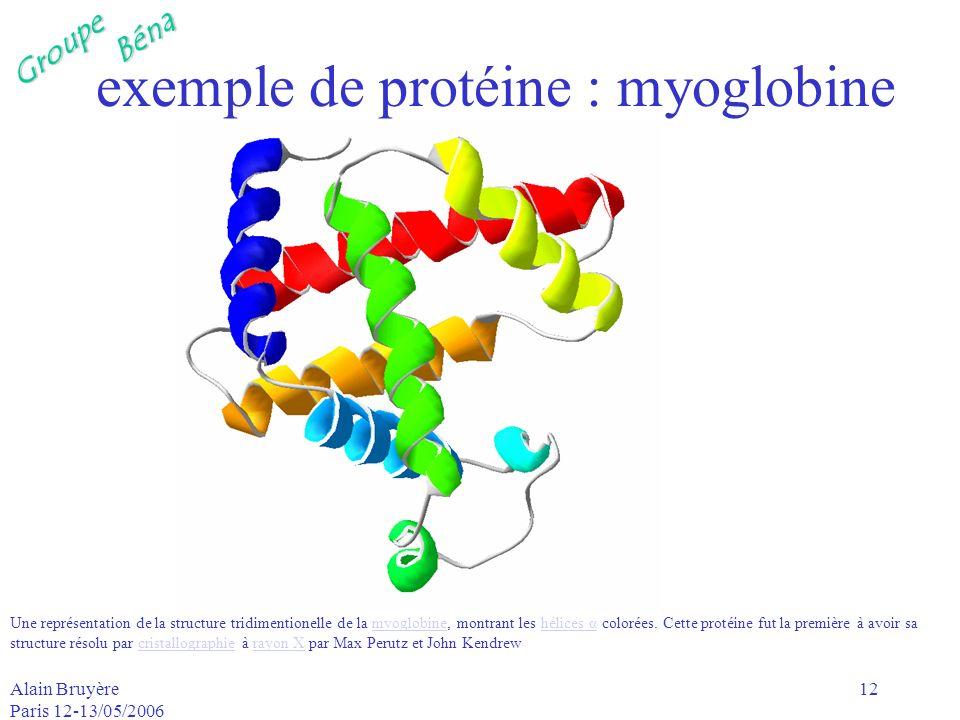 GroupeBéna Alain Bruyère Paris 12-13/05/2006 12 exemple de protéine : myoglobine Une représentation de la structure tridimentionelle de la myoglobine,