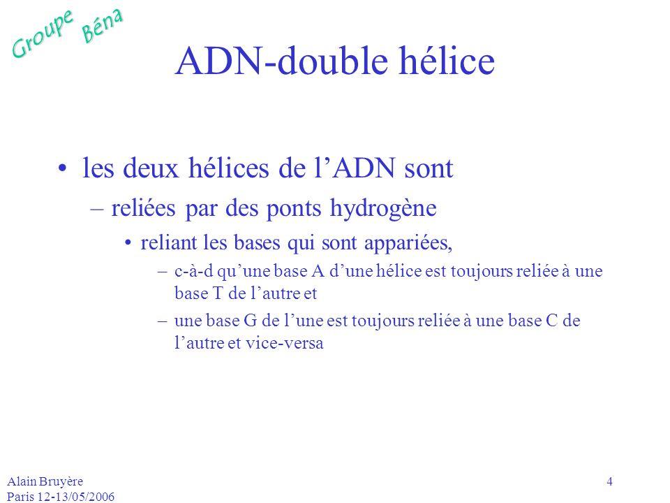 GroupeBéna Alain Bruyère Paris 12-13/05/2006 5 A, G, C, T (ADN) A, G, C, U (ARN) ADN –A adénine T thymine (2 liasons H) –G guamine C cytosine (3 liasons H) ARN –A adénine U uracile (2 liasons H) –G guamine C cytosine (3 liasons H) A et G : famille des purines U, T et C : famille des pyrimidines