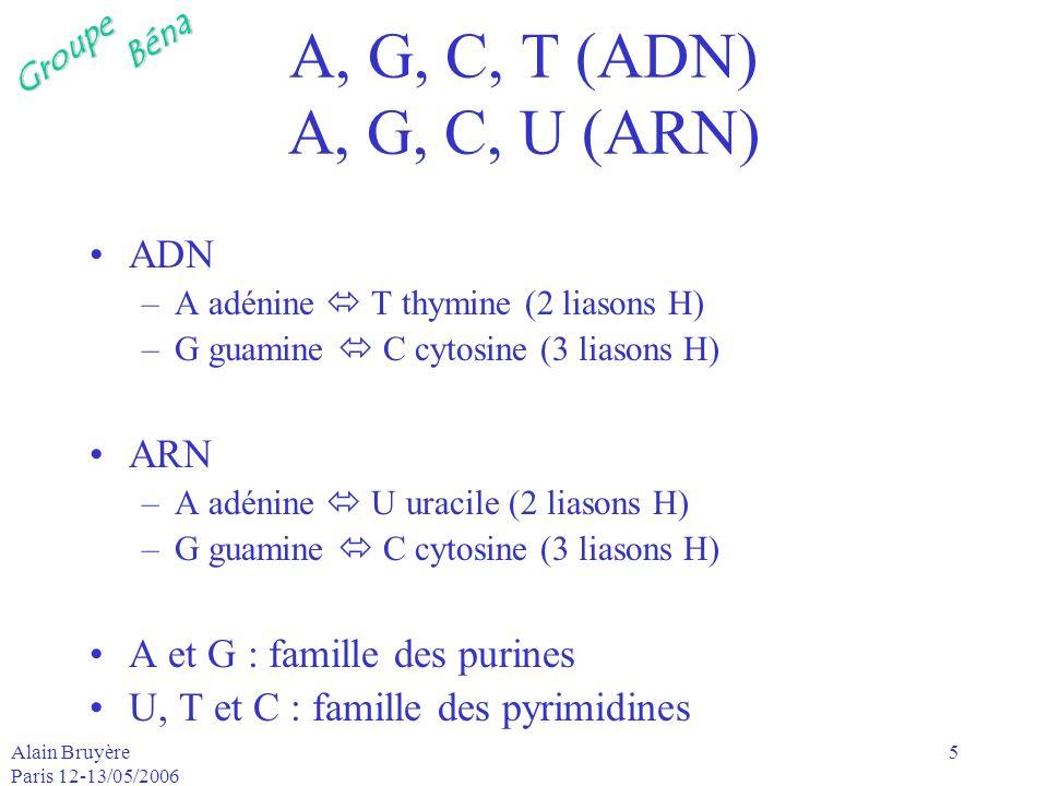 GroupeBéna Alain Bruyère Paris 12-13/05/2006 5 A, G, C, T (ADN) A, G, C, U (ARN) ADN –A adénine T thymine (2 liasons H) –G guamine C cytosine (3 liaso