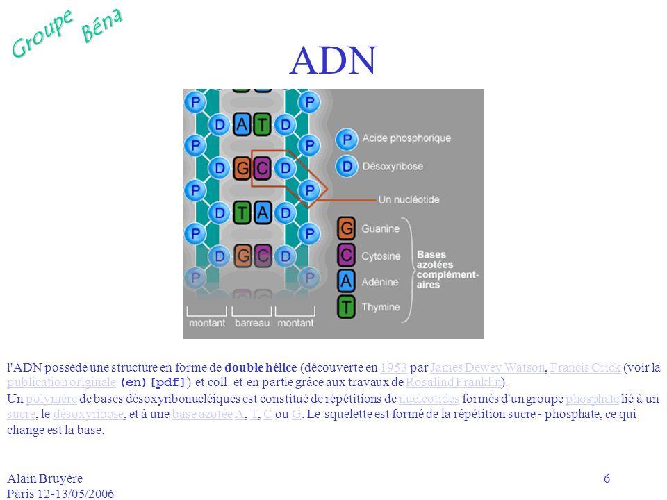 GroupeBéna Alain Bruyère Paris 12-13/05/2006 6 ADN l'ADN possède une structure en forme de double hélice (découverte en 1953 par James Dewey Watson, F