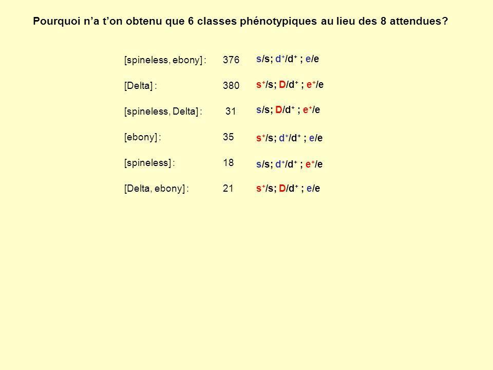 Pourquoi na ton obtenu que 6 classes phénotypiques au lieu des 8 attendues? [spineless, ebony] : 376 [Delta] : 380 [spineless, Delta] : 31 [ebony] : 3